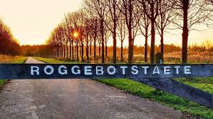 Roggebot